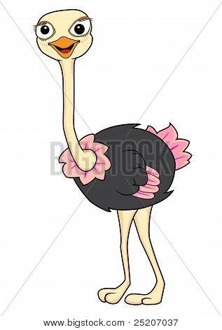 Cute ostrich