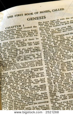 Bible Series Genesis