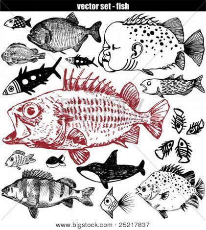 fish set - doodle