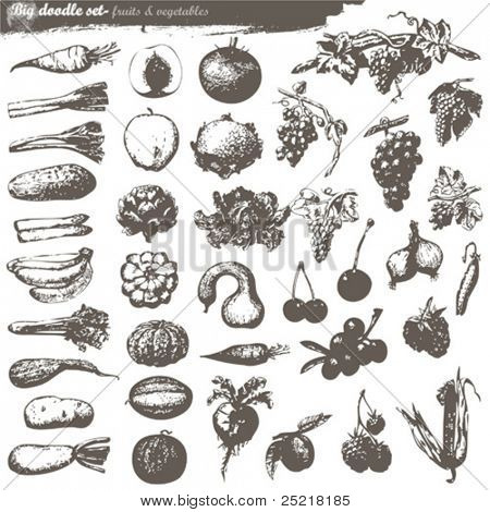 vector set - doodles - fruits and vegetables