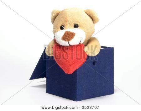 Bear sieht von der Stange