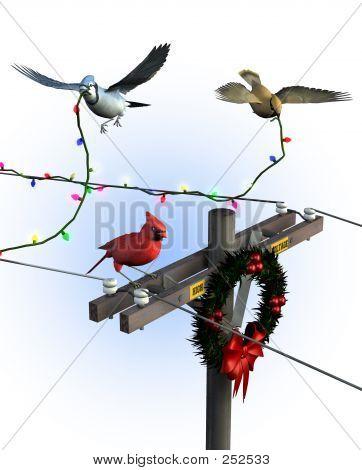 Vögel, die Dekoration für Weihnachten