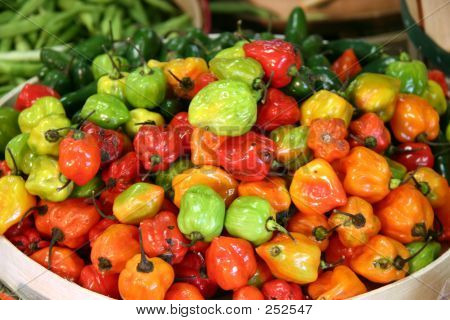 Peppers at a Farmer's Market