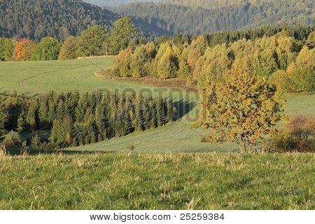 Countryside at autumn time , mountains Jesenik,Czech republic