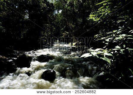 The Savegre River In San