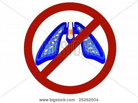 The ban on smoking