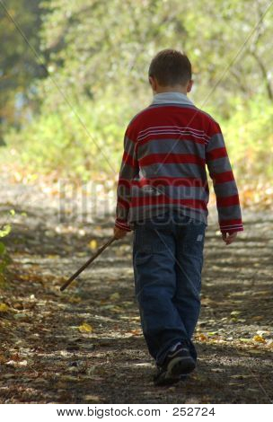 Boy With Stick On Wooded Path