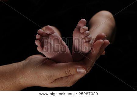 Newborn's Feet In Mother's Hand