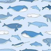 Seamless Pattern With Aquatic Animals Or Marine Mammals Hand Drawn On Blue Background - Whales, Narw poster