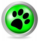 foto of paw-print  - Paw button on white background  - JPG