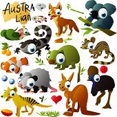 foto of opossum  - big vector australian animals set - JPG