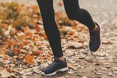 Running On Autumn Road. Road With Autumn Leaves. Sport Uniform. Jog Workout. Wellness Concept. Doing poster