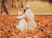 Mistress Hugging With Dog. Autumn Park. Beautiful Outdoors. Walking With Animals. Pets And People. L poster