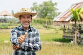Portrait Happy Mature Older Man Is Smiling. Old Senior Farmer With White Beard Thumb Up Feeling Conf poster