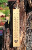Thermometer On The Wooden And High Temperatures poster