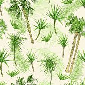 Palmtrees Seamless Pattern. Green Coconut Or Queen Palm Trees With Leaves. Beach And Rainforest, Des poster