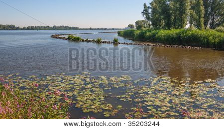 Colorful View At A River In Summertime