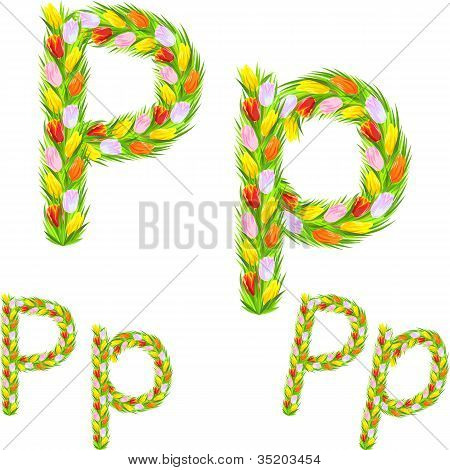 Vector Font Type Letter P Made From Flower Tulip