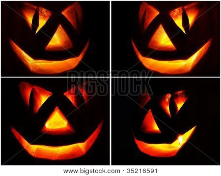 Jack O Lantern on the black, set