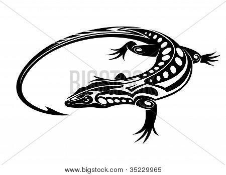 Black Iguana Lizard