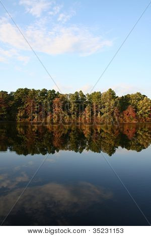 Blue Sky and Trees on Shoreline Reflected in Lake