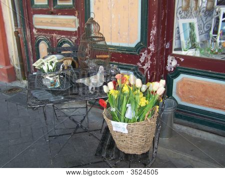 Antique Kitchen Garden Shop