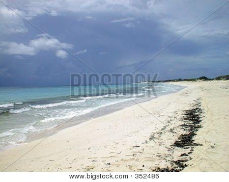 Cozumel, Mexico Shoreline
