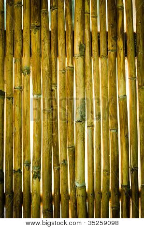 Texture Of Old Wall Bamboo