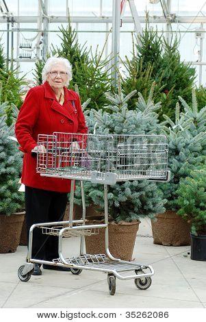 leitende Frau mit Warenkorb einkaufen Weihnachtsbaum