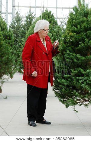 Senior shopping für Weihnachtsbaum
