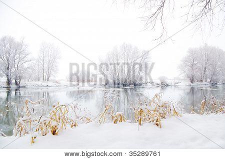 Paisagem de Inverno congelado