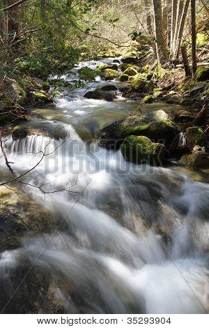 Stream Flowing