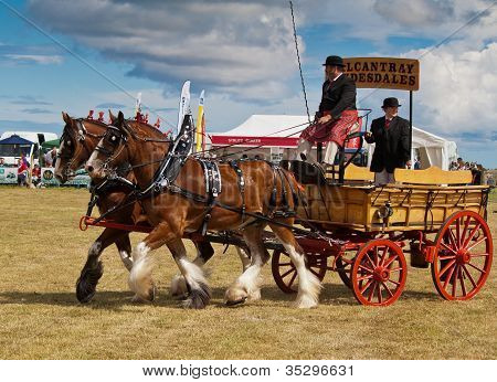 Vintage carriage being pulled by clydesdale horses