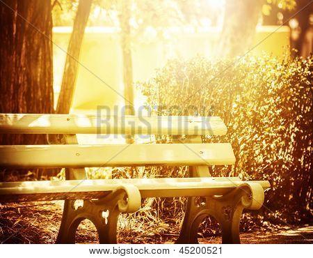 Hermoso Banco de madera en el parque, la luz del sol amarillo brillante, lugar para descansar, mañana tranquila, su