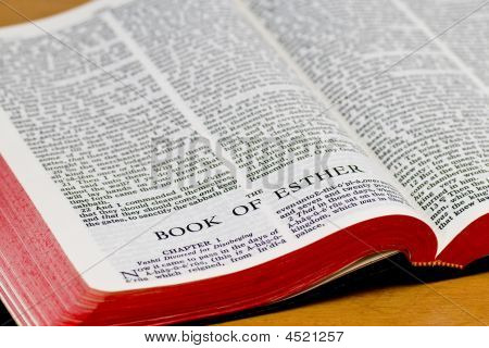Bible Page - Esther