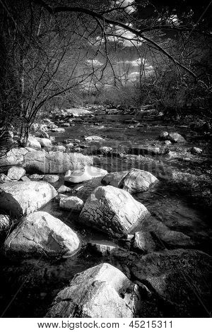 Black And White Rapids Of A Small Stream