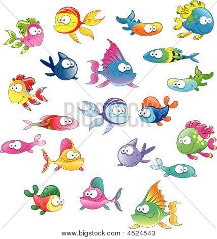 Familie von Fisch