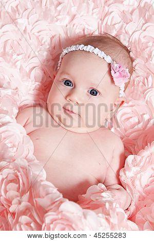 Sweet baby girl on rose blanket