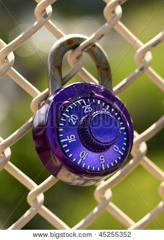 Single Purple Lock on Fence
