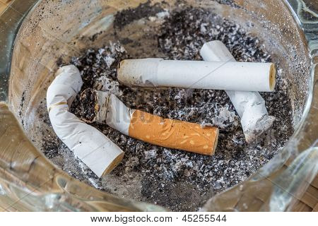 Stubs Of Cigarettes With Ashes