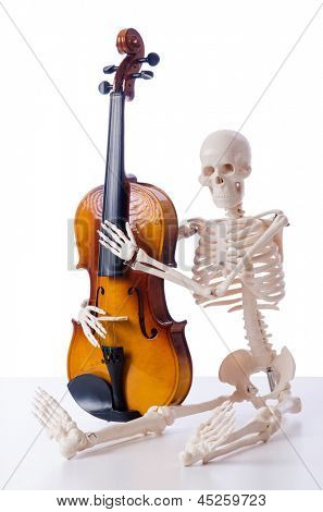 Skeleton playing violin isolated on the white