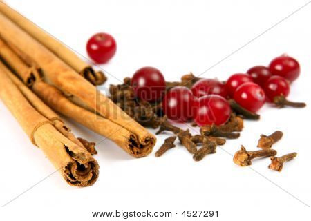 Cinnamon Carnation And Cranberry