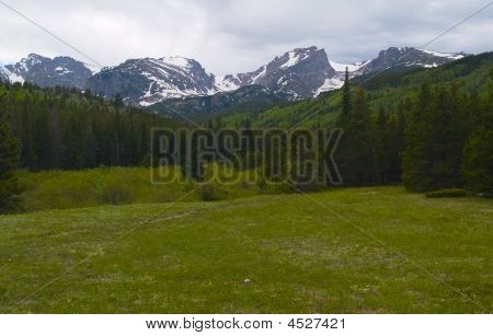 Meadow Under Spring Mountains