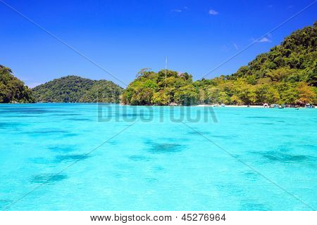 Snorkeling point with beautiful coralscape at Surin national park Phuket Thailand