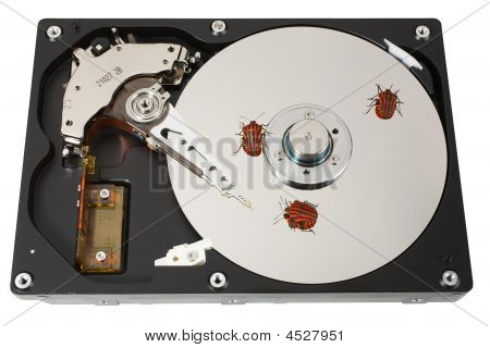 Hard Disk, Three Bugs