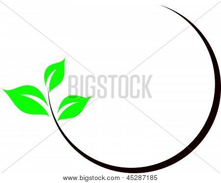 Organic icon With Green Leaves