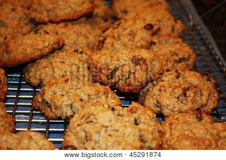 Raisin an Oatmeal Cookies