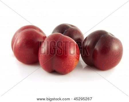 Isolated red ripe plums on a white background