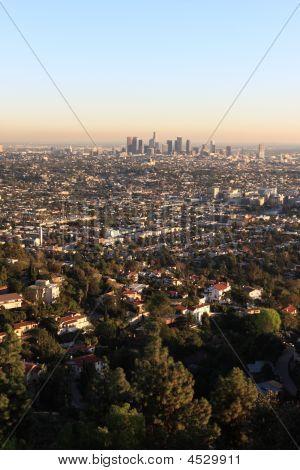 Los Angeles Scene