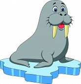 stock photo of blubber  - Vector illustration of Cute walrus cartoon on ice - JPG